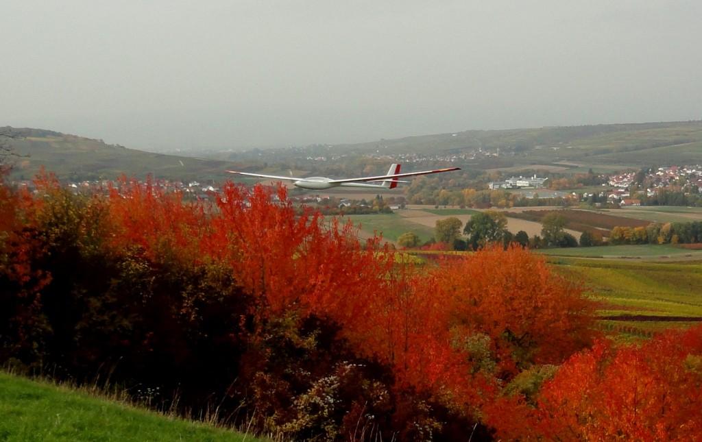 Herbst_am_Bleichkopf